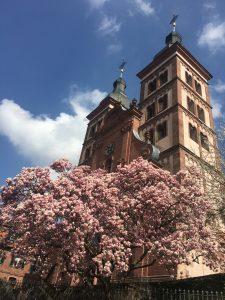 Amorbach_Kirche