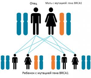 Grafik Artikel Rußland